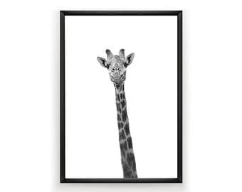 Giraffe Print, Nursery Wall Art, Woodland Nursery Decor, Nursery Animal Wall Art, Giraffe Print Wall Art, Giraffe Print, Nursery Art Print