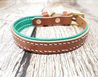 Lined Classic Buckle Leather Dog Collar - 5/8'' (small)