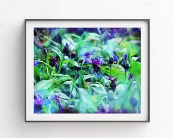 Vivid fine art, emerald wall art, printable photography, digital download flowers, dark green wall art, wild flowers download, background