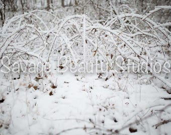 Digital Background w/Snow, Newborn Photography, Digital Download, Winter Backdrop, Digital Prop, Christmas Backdrop, Composite Photography