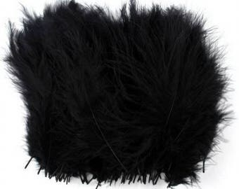 Set of 5 black feathers