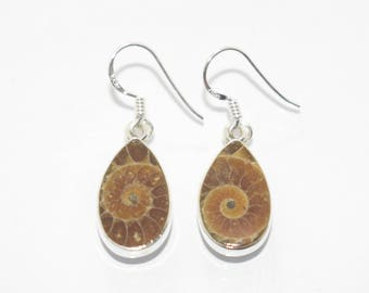 30% Discount 925 Sterling Silver Natural Ammonite Earrings, Fossil Jewelry, Fossil Earrings, Earrings with the Ammonite