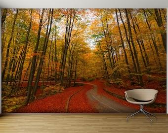 Autumn Forest | Etsy Part 79