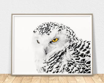 White Owl Poster -  Printable Wall Art, Owl Decor, Snowy Owl, Bird Art, Polar Owl, Large Wall Art, Owl Nursery Art, Owl Lovers Gift