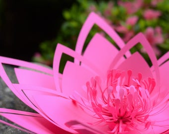 Paper flower template. PDF. Large (18 inch) Water Lilly.