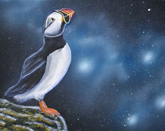 Puffin bird painting - Puffin bird mural painting