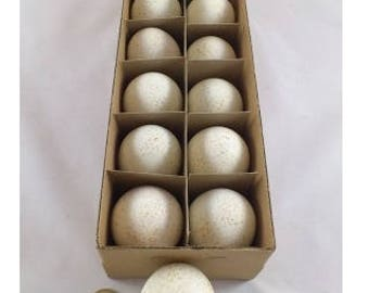 12 empty  Turkey eggs - birds - taxidermy - home decoratioen - easter