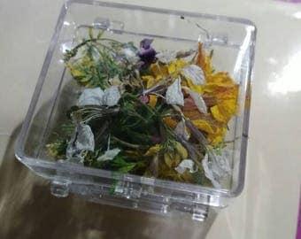 Box dried flowers