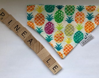 Over the collar cat or dog bandana - tropical pineapples - FREE SHIPPING