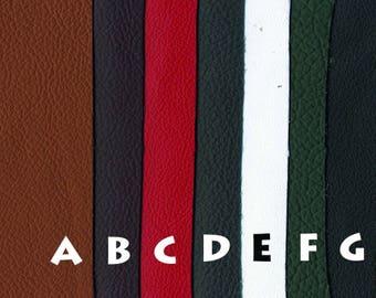 Premium Soft Light Weight Garment Leather (20 square feet)