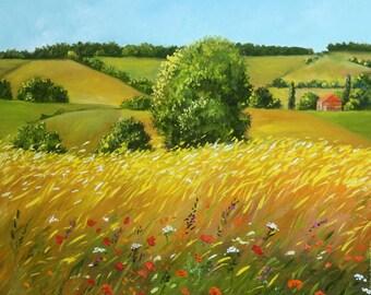 Field. Summer. Tuscany. Italy