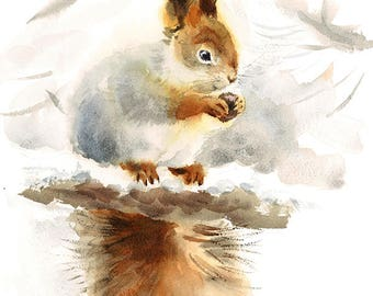 Squirrel Eating Nuts Watercolour Painting Q10