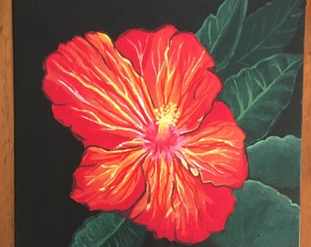 Red Hawaiian Flower
