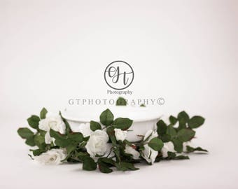 Digital Backdrop, Elegant White Bowl and Vine Digital Backdrop