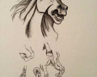 Horse Illustration - Renaissance horse