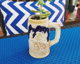 Small beer stein with succulent plant