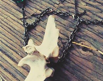 Deer Vertebrae Charm/Bracelet