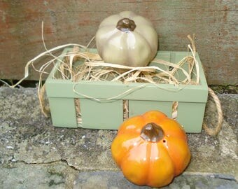 Pumpkins In A Crate Salt/Pepper Autumn Squash Fall Thanksgiving Harvest Festival Halloween Orange Green