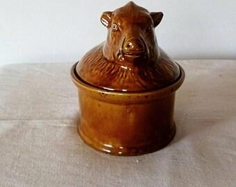Small boar in Terra-cotta pot