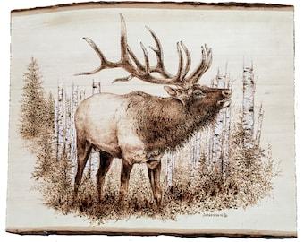 Elk wood burnt Illustration