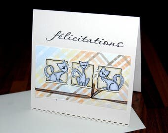 Congratulations - three little cats card