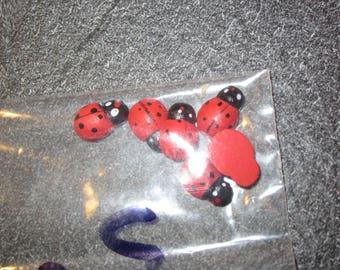 set of 6 mini wooden ladybugs to stick