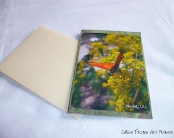 "Greeting card ""Butterfly Sun"" 10 5x15cm"