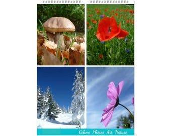 "Wall calendar 2017 format A3 white Céline Photos ""seasons"""