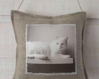 Custom door cushion (has the order)