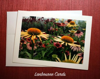 Farm Stand Flora Notecard