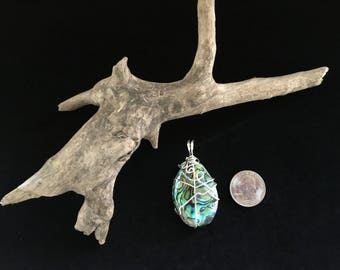 Wire wrapped Abalone shell pendant