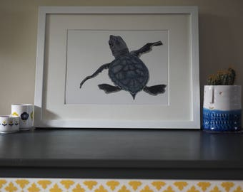 Green Turtle Baby A4 Print