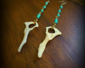 Mink pelvis earrings