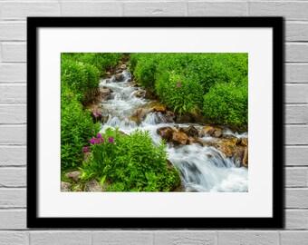Peaceful Colorado Summer  - Digital Download