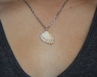 Simple shell pendant necklace