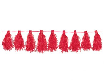 Party decoration,Red Tassel Garlands 3m