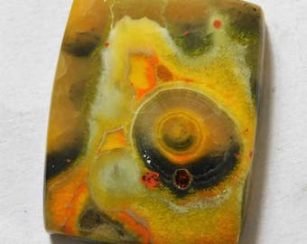 58.40 Cts Natural Bumble Bee Jasper Cabochon Loose Gemstone