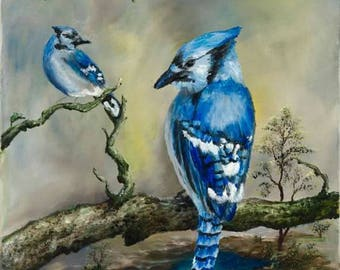 Blue Jays in the Forest