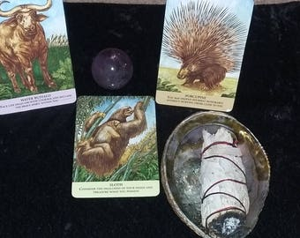 Three Card Oracle Reading