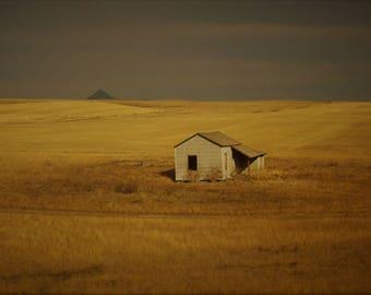 Western Abandon