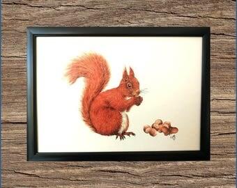 "Art print A4 ""Squirrel"""