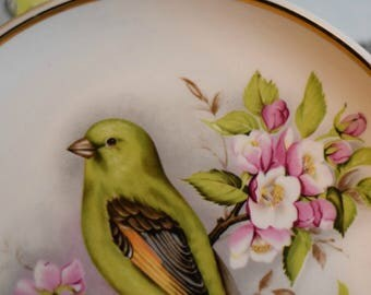 Vintage Greenfinch Bird Tea Plate ~ Pink Cherry Tree Blossom ~ Prinknash Pottery ~ Gloucester ~ Wall Art ~ Cake Plate ~ Side Plate