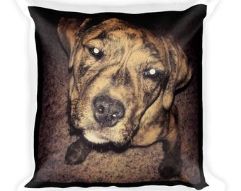 Square Dog Face Pillow