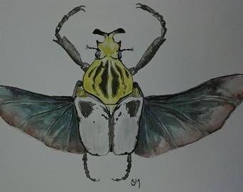 Watercolor Beetle original painting