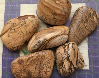 Polished Picture Jasper  THREE Piece Parcels Librarian Stone, Grounding, Answers to the Unasked Questions  Healing Crystals and stones