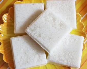 Salt Scrub Soap Bar Coconut Milk - Soap Scrub, Exfoliating Soap, Beach Soap, Tropical Soap, Hostess Gift, Summer, Teen Gift, Unisex Soap
