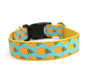 "1"" Pineapple buckle or martingale dog collar"