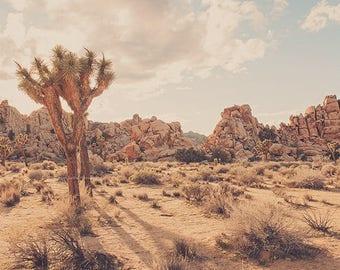 Joshua Tree art, desert print, California desert photo, landscape photography, southwest decor, Joshua Tree photograph, dorm decor, boys