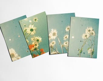Daisy Flower Postcards With Envelopes, Leaf Art - Daisies