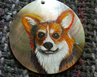 Corgi on the Shell